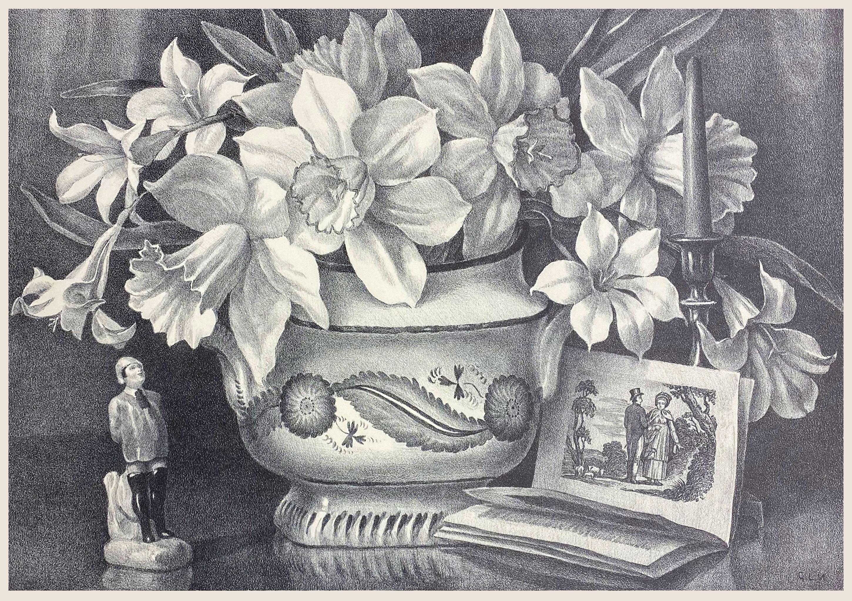 Daffodils Tristis